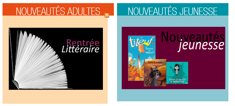 Fichier:Articledomaine.png