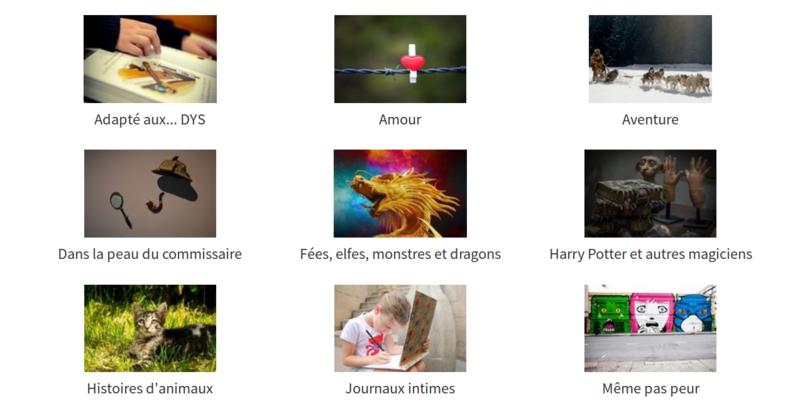 Fichier:Boite domaine affichage.png